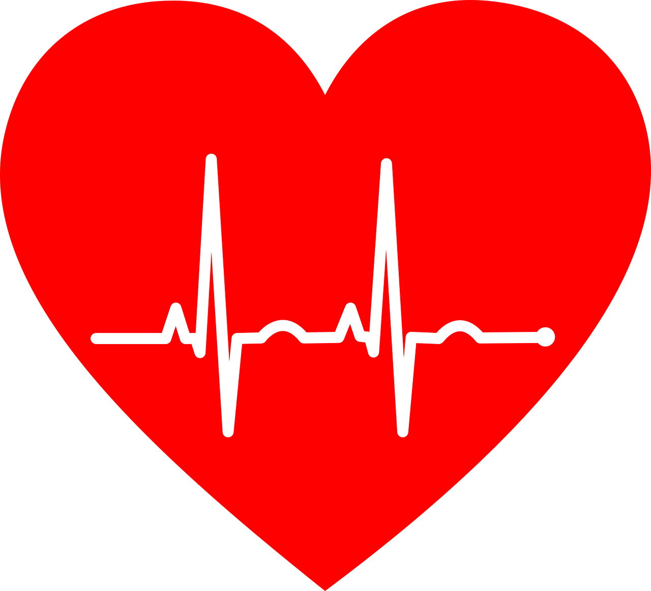 ekg, electrocardiogram, heart-2069872.jpg